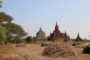 2016 Myanmar_0243