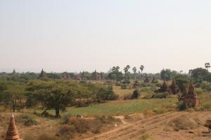 2016 Myanmar_0261