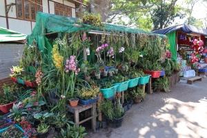 2016 Myanmar_0413