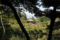 Japan-2017_558