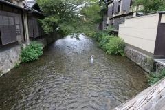Japan-2017_764