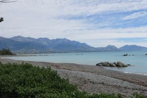 2017 New Zealand_0291