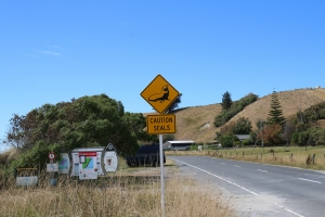 2017 New Zealand_0294