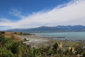 2017 New Zealand_0296