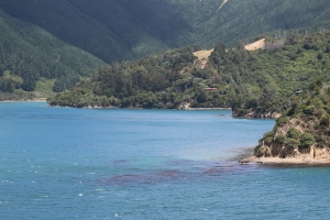 2017 New Zealand_0364