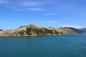 2017 New Zealand_0374