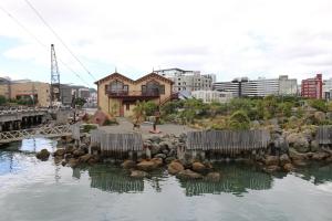 2017 New Zealand_0397
