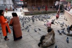 2019-Kathmandu_0026