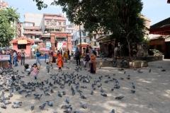 2019-Kathmandu_0029