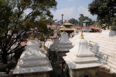 2019-Kathmandu_0248