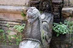 2019-Kathmandu_0291