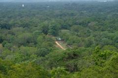 Sri-Lanka-2020_0029