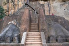 Sri-Lanka-2020_0052