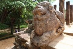 Sri-Lanka-2020_0068