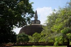 Sri-Lanka-2020_0103