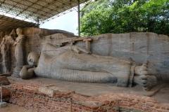 Sri-Lanka-2020_0113