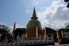 Sri-Lanka-2020_0126
