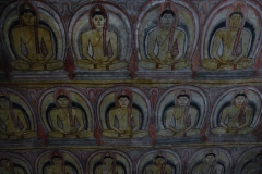 Sri-Lanka-2020_0142