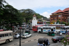 Sri-Lanka-2020_0166