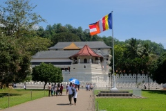 Sri-Lanka-2020_0173