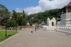 Sri-Lanka-2020_0175
