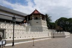 Sri-Lanka-2020_0202