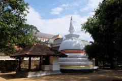 Sri-Lanka-2020_0206