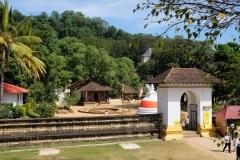 Sri-Lanka-2020_0209