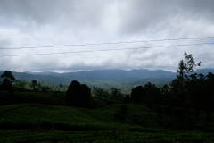 Sri-Lanka-2020_0224