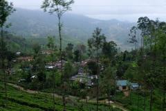 Sri-Lanka-2020_0246