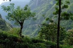 Sri-Lanka-2020_0277
