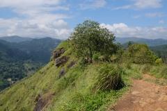 Sri-Lanka-2020_0297