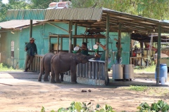 Sri-Lanka-2020_0335