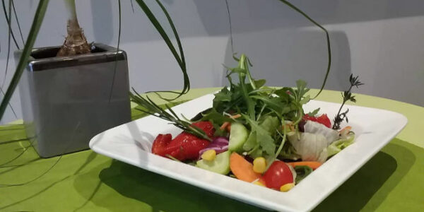 Antipasti-salat slider