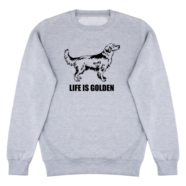 sweater, golden retriever, life is golden, I love my golden retriever