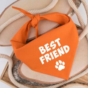 bandana, hond, best friend