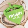 bandana, hond, fluffy not fat, monsieur beaux