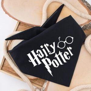 bandana, Harry Potter, hairy potter, hond