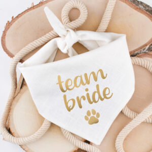 bandana, hond, team bride, huwelijk