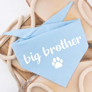 zwangerschap, aankondiging, bandana, hond, big brother, big sister