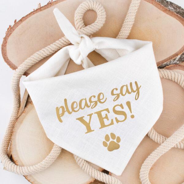 bandana, linnen, huwelijk, aankondiging, wil je met mij trouwen