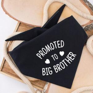 hondenbandana, zwangerschap, promoted to big brother, aankondiging