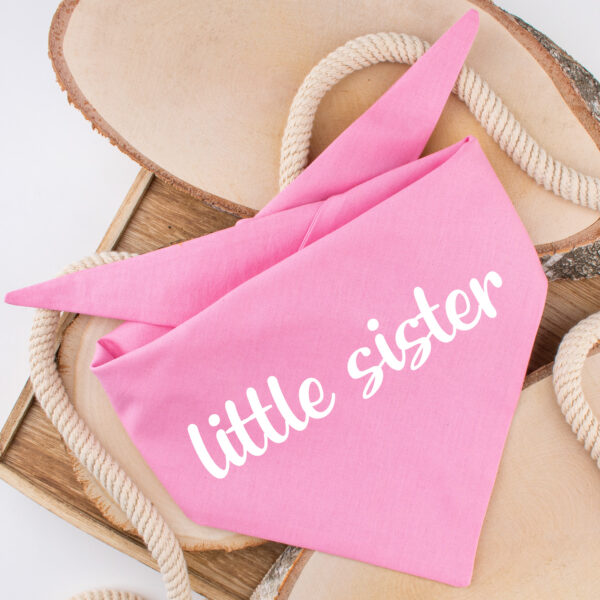 bandana, hond, little sister, baby