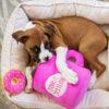 speelgoed, zippypaws, hond, hondenspeelgoed, hondenspeeltje, donut