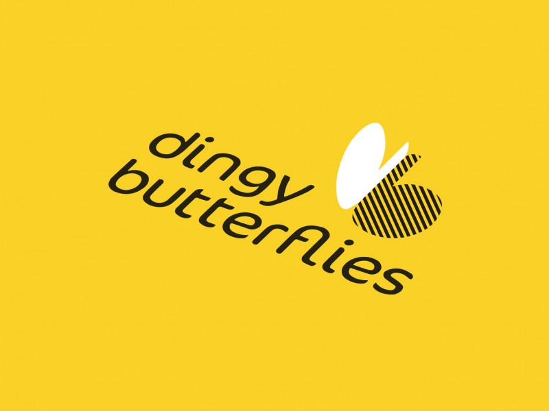 Dingy Butterflies
