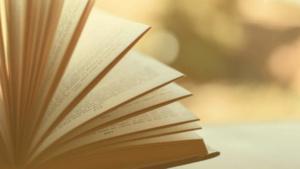 Feldenkrais Literatur