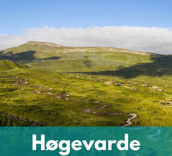 trail guide høgevarde