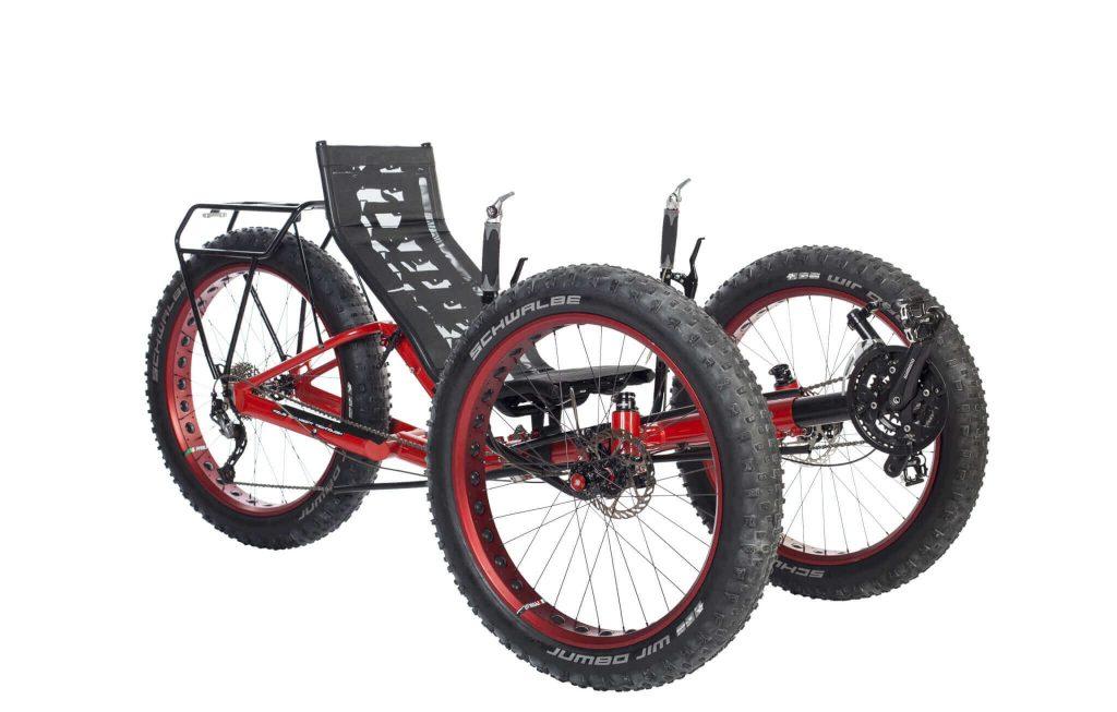 adaptive bike trike