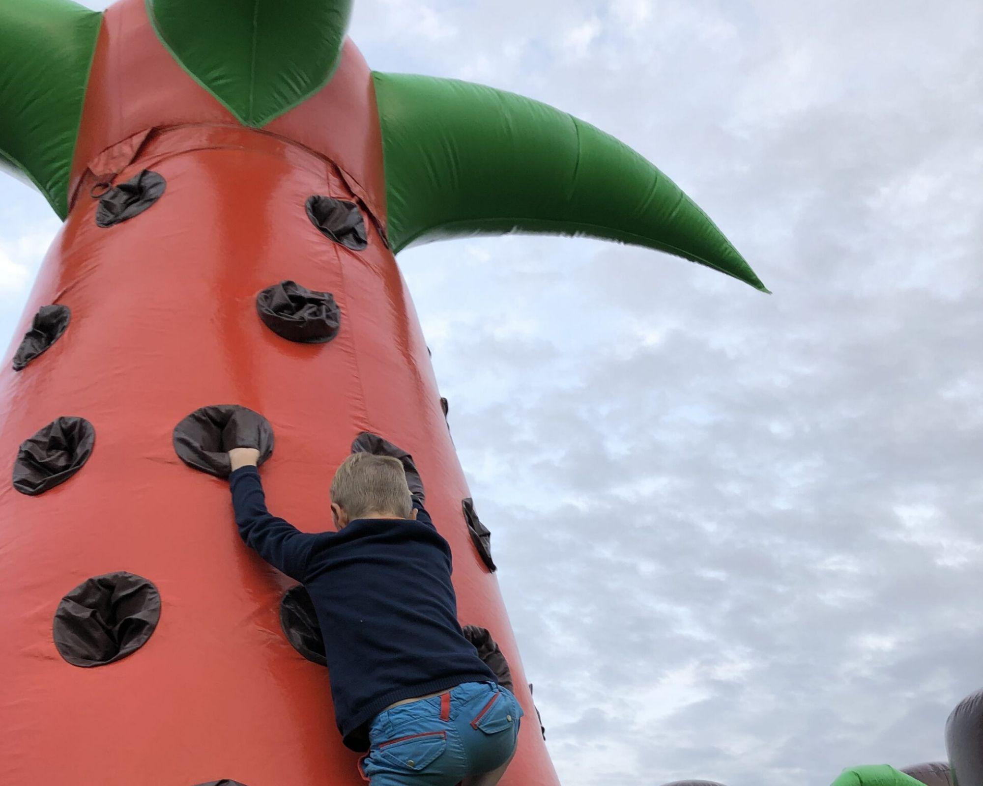 Multifun Klimtoren jongen beklimt palmboom klein