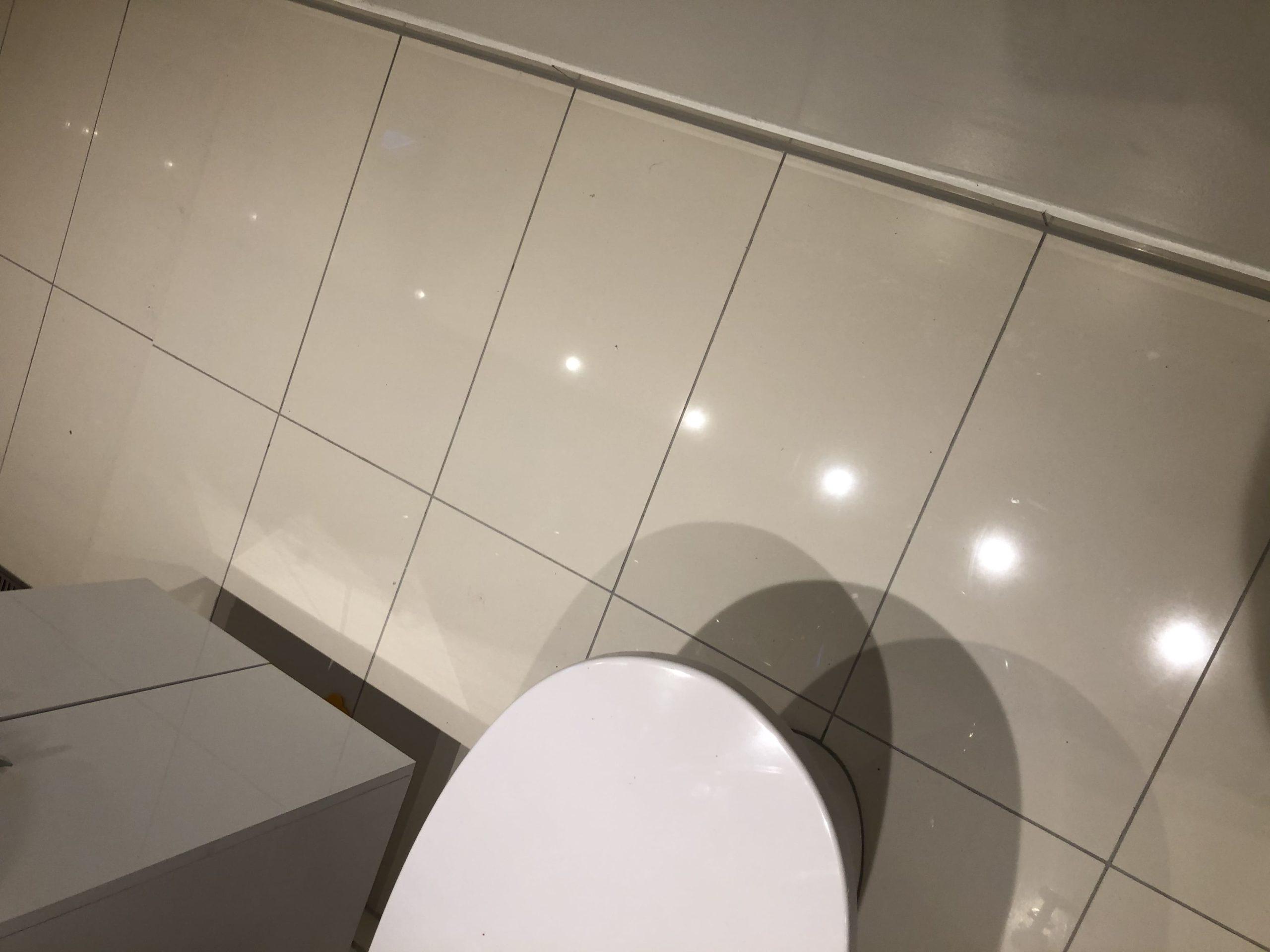 Ny etablere badeværelse i kælder. - tidligere pulterrum